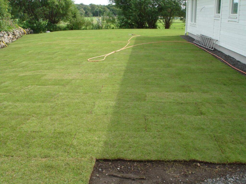 Anlägga färdig gräsmatta